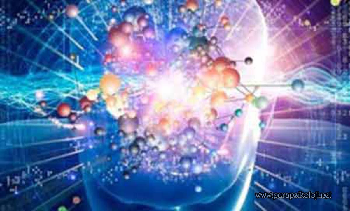 En Büyük İlaç Deposu, Beyin Nosebo ve Plasebo Etkileri