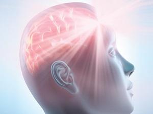 Front Brain and Parapsychological Bonds Prefrontal Cortex