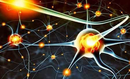 20 Yıl içerisinde Telepatik iletişim Mümkün Olabilir - Nöronlar
