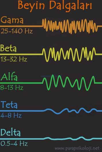 beyin dalgaları, gama, beta, alfa, teta, delta