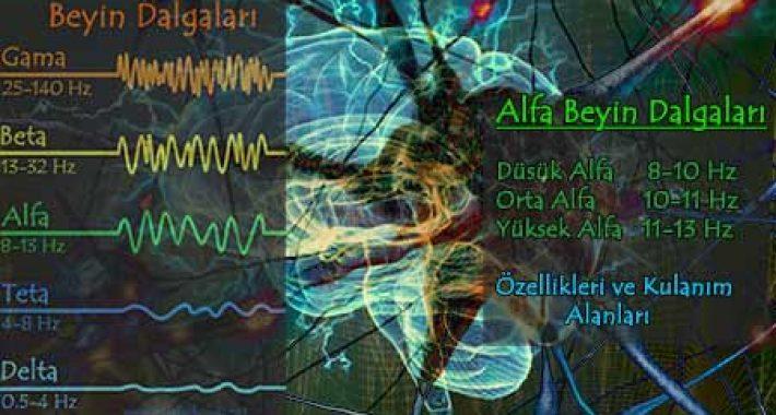 Alfa Dalgaları, Özellikleri ve Kullanım Alanları