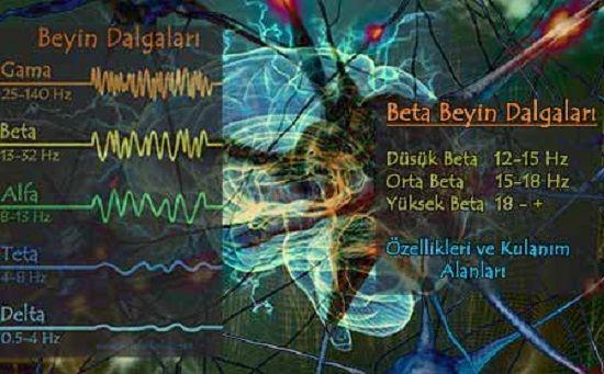 Beta Beyin Dalgaları, özellikleri, Olumlu ve Olumsuz Etkileri, kullanım alanları