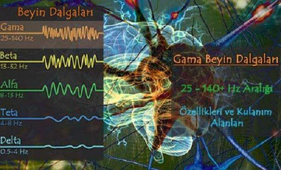 Gama Dalgaları, Özellikleri ve Kullanım Alanları. Gama beyin dalgaları