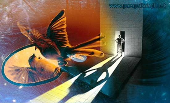 Ruhsal Gelişimde Ego Sorunları ve Nedenleri